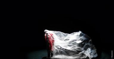 Teatro a corte fra danza, teatro di figura e arte contemporanea. e il teatro sconfigge la paura. -a cura di Nicola Arrigoni