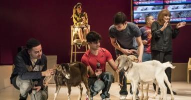 (LONDRA) Goats [Capre] di Liwaa Yazji, regia di Hamish Pirie. -a cura di Beatrice Tavecchio