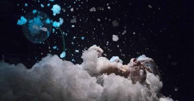 """INEQUILIBRIO XXI - """"SEI. E DUNQUE, PERCHE' SI FA MERAVIGLIA DI NOI?"""" - PierGiuseppe di Tanno affascina con eclettica bravura il pubblico del Festival. - di Mario Mattia Giorgetti"""