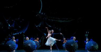 """Queensland Ballet Il """"Sogno"""" di Scarlett conquista il numeroso pubblico di Brisbane"""