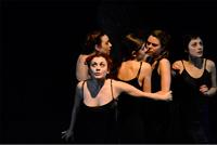 Accademia Veneta Teatrale
