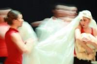 Accademia Teatrale Veneta
